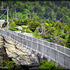 Swinging Bridge<br /> Grandfather Mountain  NC