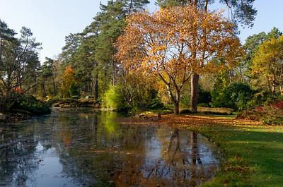 Arboretum des Grands Bruyeres