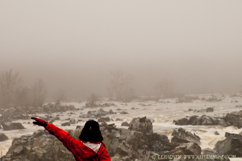 Stretching in Morning Mist.  Taken at Great Falls, Virginia.