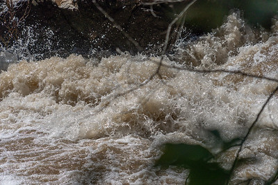 The river was about 6.0 feet on the Little Falls gauge which is a high level for June.  I used a shutter speed of 1/8000 to try to freeze the action of the river -- hard to do at that river level.