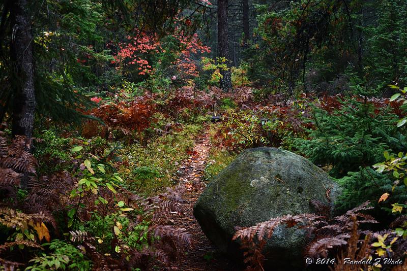 Andrus Lake Path