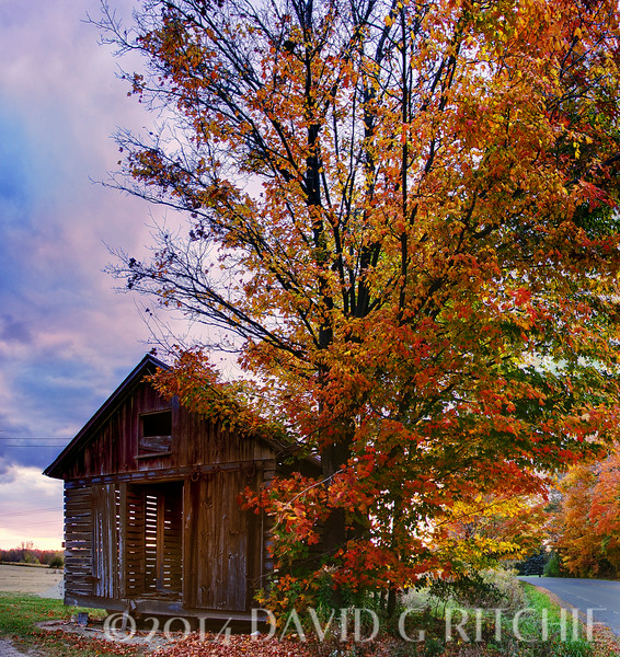 """Evening Beauty""<br /> A colorful Michigan scene taken after sunset when the fall colors rule."