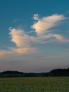 20120822.  Sunset clouds at Great Meadows NWR.