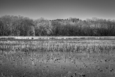 3 December 2011.  Great Meadows NWR in Concord MA.  View from dike across Lower Pool.  Photo taken with Nikon D90 and Nikkor 24-70 mm with yellow/orange filter (040M).  Photo processed with Photomatix Pro 4.1 and Adobe Photoshop CS5.