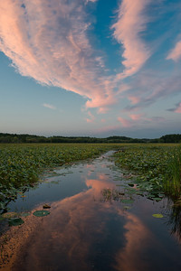 20120822.  Reflection of sunset clouds at Great Meadows NWR.