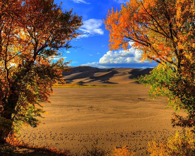 Great Sand Dunes National Park (15 of 18)