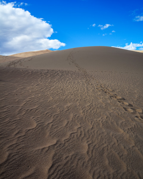 Great Sand Dunes National Park (7 of 18)