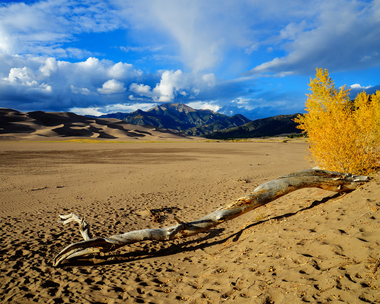 Great Sand Dunes National Park (16 of 18)