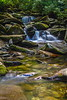 Small Falls In The West Prong Of The Little Pigeon River