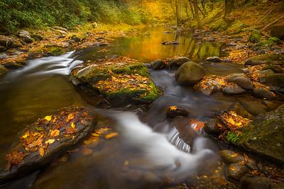 Babbling Cascades_ Tremont River_GSMNP