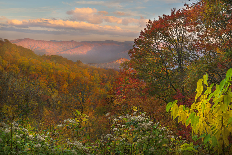 Morning Along the Blue Ridge Parkway