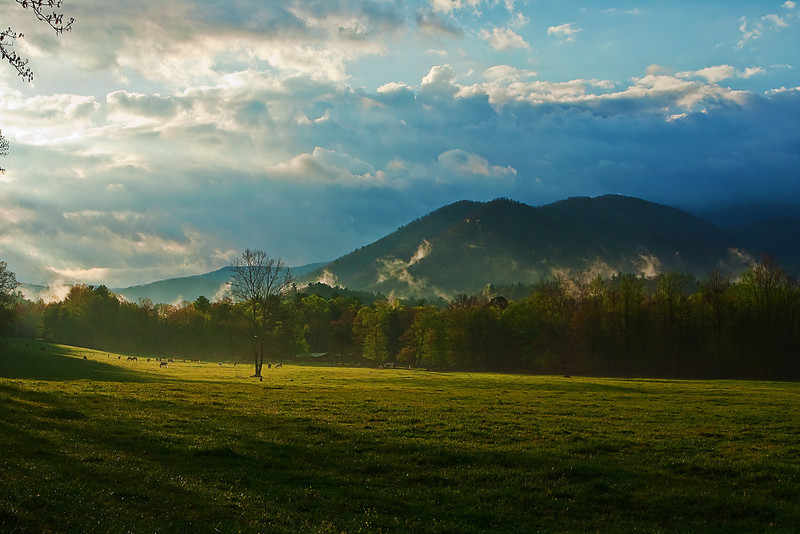 Tennessee, Great Smoky Mountains, Cades Cove, Sunrise, Spring, Landscape, 美国 大烟雾山国家公园,田纳西, 风景