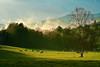 Tennessee, Great Smoky Mountains, Cades Cove, Sunrise, Spring Fog, Landscape, 美国,田纳西, 大烟雾山国家公园 风景