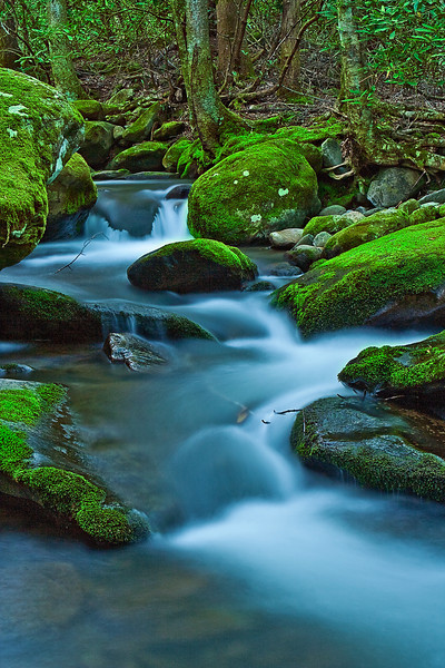 Tennessee, Great Smoky Mountains, Roaring Fork, Stream, Rocks, Landscape, 美国 大烟雾山国家公园,田纳西,风景