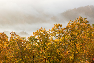 Autumn Fog in the Foothills II