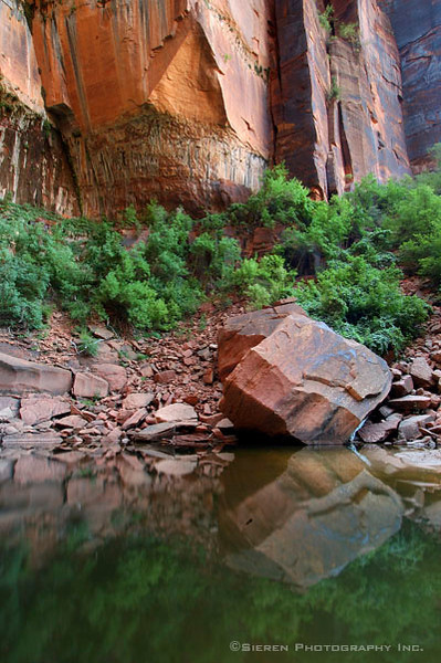 Emmerald Pools<br /> Zion National Park