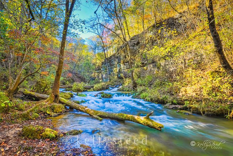 Greer Spring - Oregon County Missouri