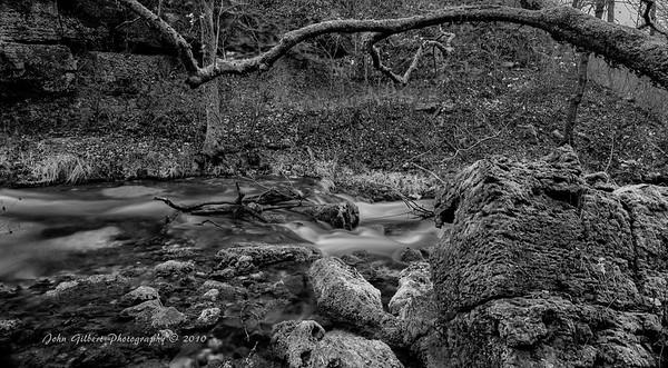 Spring Water #7