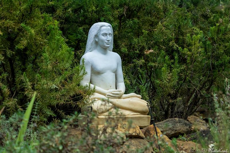 Babaji Meditating