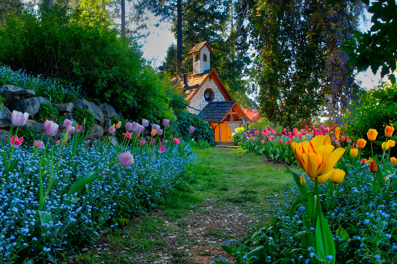 Hermitage Chapel in Tulips Painted