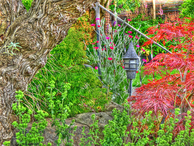 Grunge Gardening