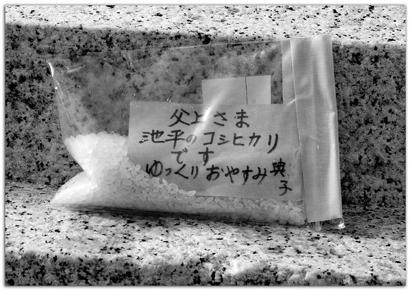 Rice offering at the base of the Sugar King statue.
