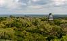Tikal Temple IV Jungle Canopy 03-2015