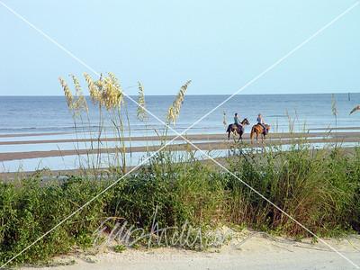 beach ride 2