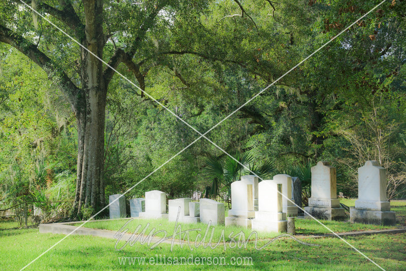 10   Logtown cemetery 1638