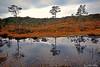 Hauststemning ved Eikelandsvatnet