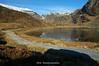 Fra Øvre Steinkvanndalen på Kvamskogen