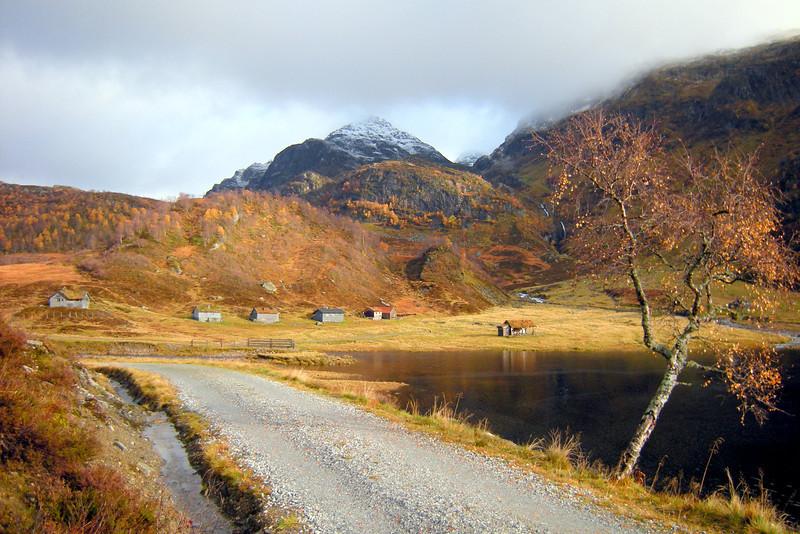 Nedre Steinkvanndalen på Kvamskogen