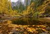 Falling for Yosemite