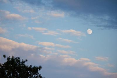 moon2b