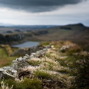 Hadrian's Wall, the Clayton rebuilding, Northumberland UK
