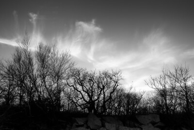 3 December 2011. Halibut Point State Park.  Photo taken with Nikon D90 and Nikkor 24-70 mm with yellow/orange (040M) filter and circular polarizer. Processed with Photomatix Pro 4.1, Nik Silver Efex Pro 2, and Adobe Photoshop CS5.
