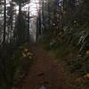 140  G Trail View V