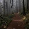 128  G Trail View V