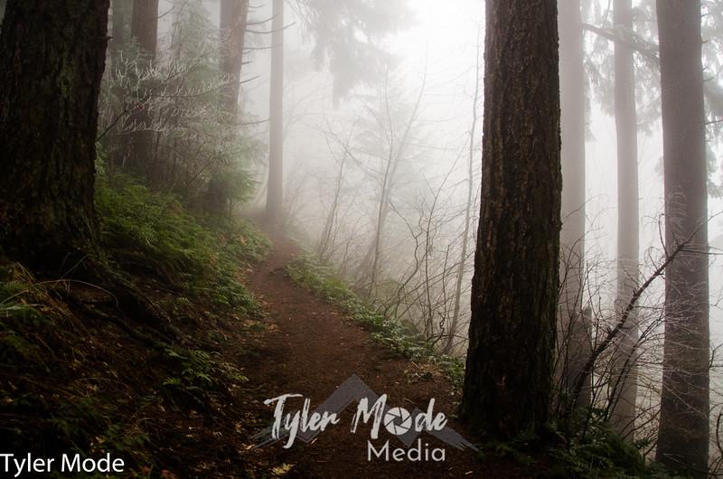 44  G Foggy Trail