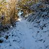205  G Snowy Trail Up V