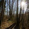 254  G Sunny Trail V