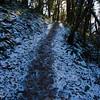 103  G Snowy Trail and Sun V