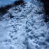 64  G Snowy Trail V
