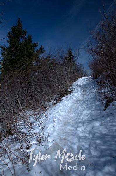 51  G Snow Near Summit