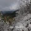 92  G Snowy View