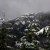 94  G Snowy Hardy Ridge