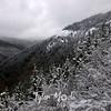95  G Snowy View