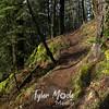 36  G Trail Sun