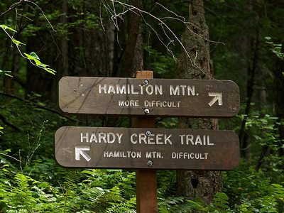 Hamilton Mountain, Washington