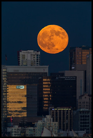 It's the Great Pumpkin Charlie Brown!  August 'Supermoon' rising over San Diego.